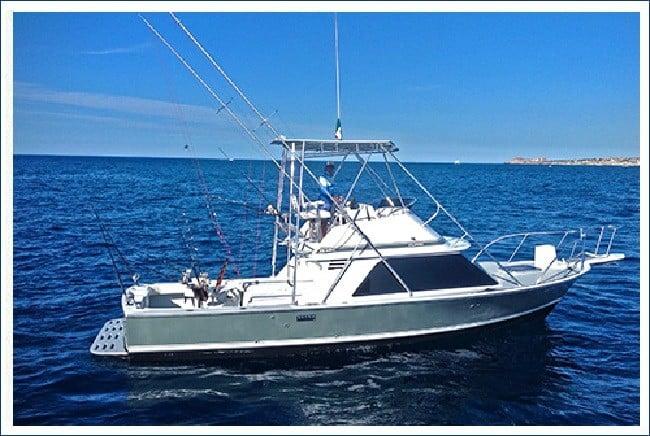 33' Blackfin