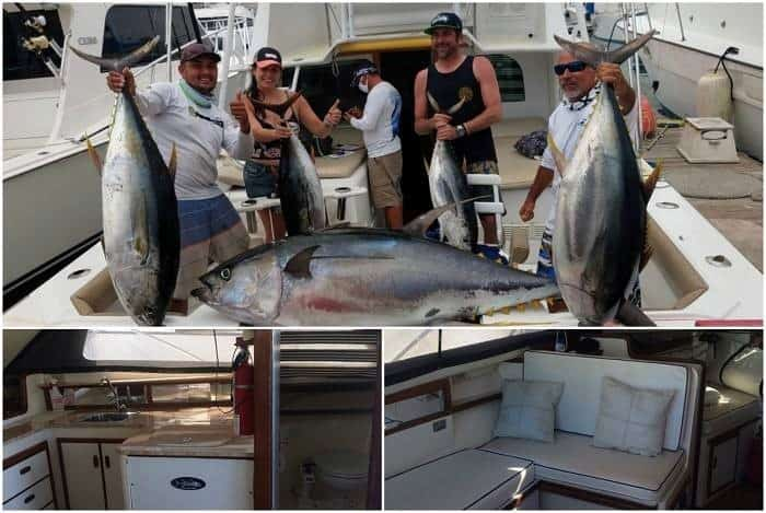 34' Blackfin