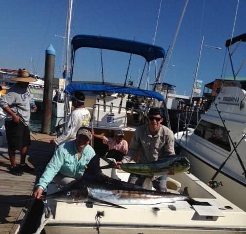 Cruiser Marlin Dorado