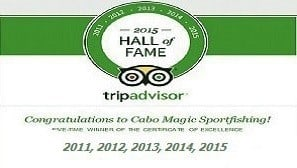 TripAdvisor Hall of Fame 5 years in a Row