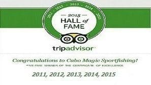 TripAdvisor Hall of Fame 5 years in a Row