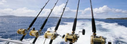 Saltwater fishing rods in Rocket Launcher by Cabo Magic Sportfishing