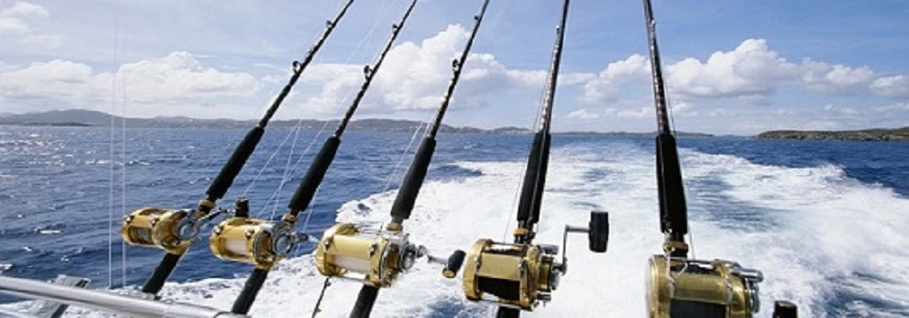 Saltwater fishing rods and reels ready
